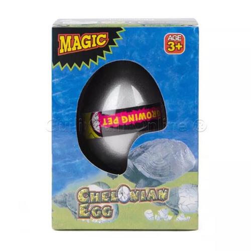 caja 12 huevo tortuga grande crece agua crecencio fiesta