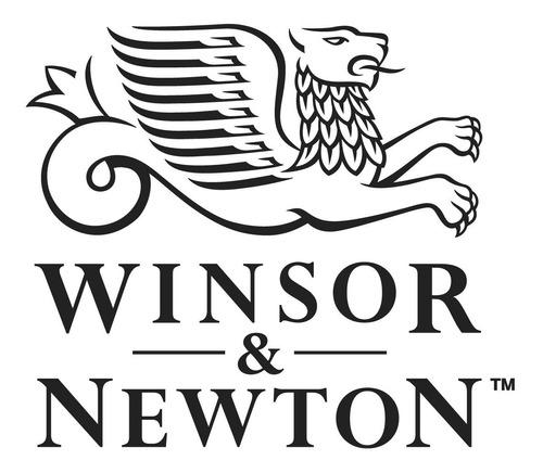 caja acuarelas winsor & newton cotman 14 past barrio norte