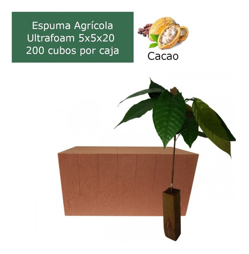 caja de espuma agrícola ultrafoam cacao 5x5x20 (200 cubos)
