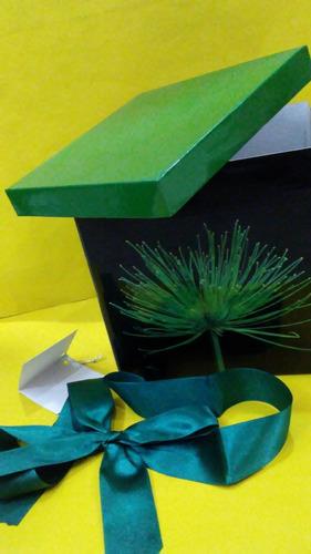 caja de regalo con lazo y tarjeta [17 x17 cm aprox]
