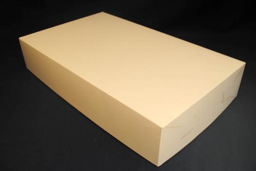 caja jumbo (37*62*12 cm)