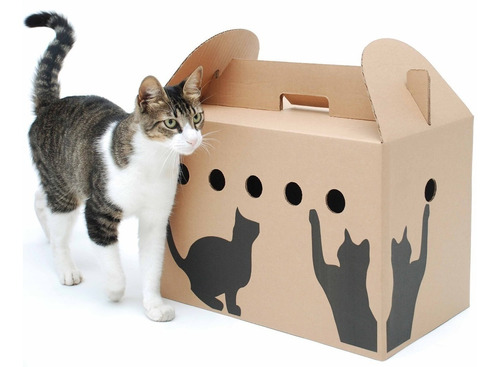 caja transportadora de cartón para gatos