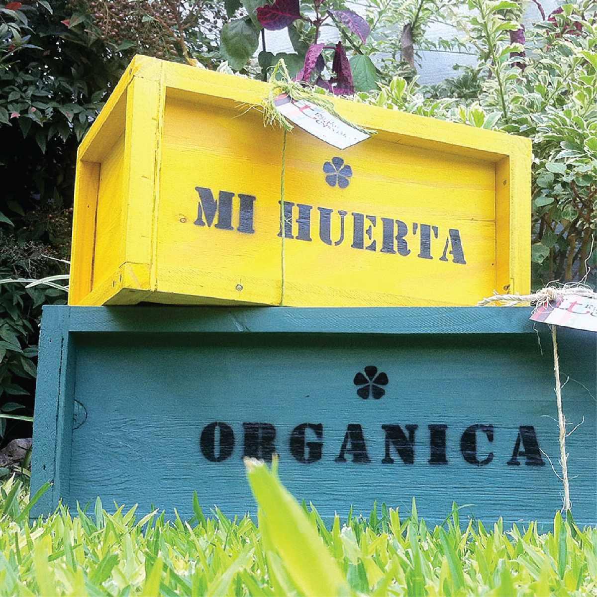 Macetas originales maceta pillow macetas originales para for Plantas para huerta organica
