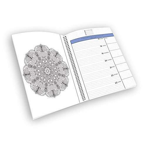 Calendario 2018 - Calendario / Planificador Para Colorear ...