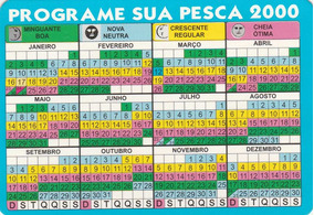Calendario Pesca 2020.Calendario Bolso 2000 Programe Sua Pesca Bg4