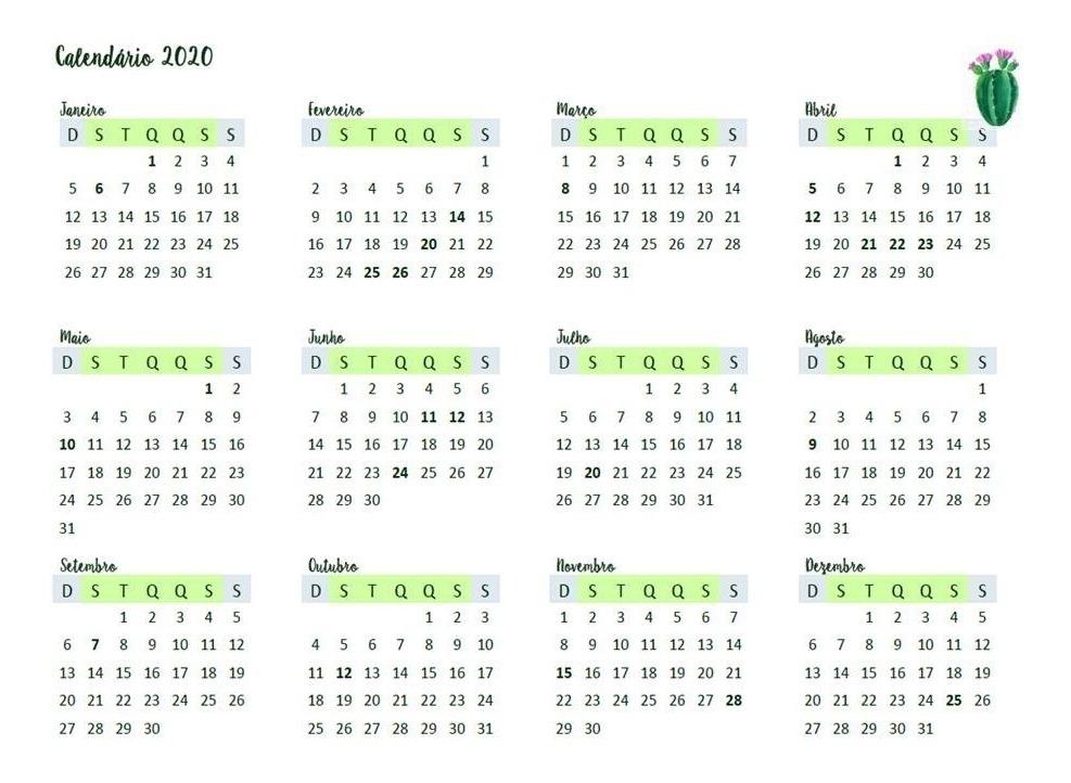Calendario 2020 Com Feriados Para Impressao.Calendario Planner 2020 Cactos Feriados Agenda Mes A Mes Pdf
