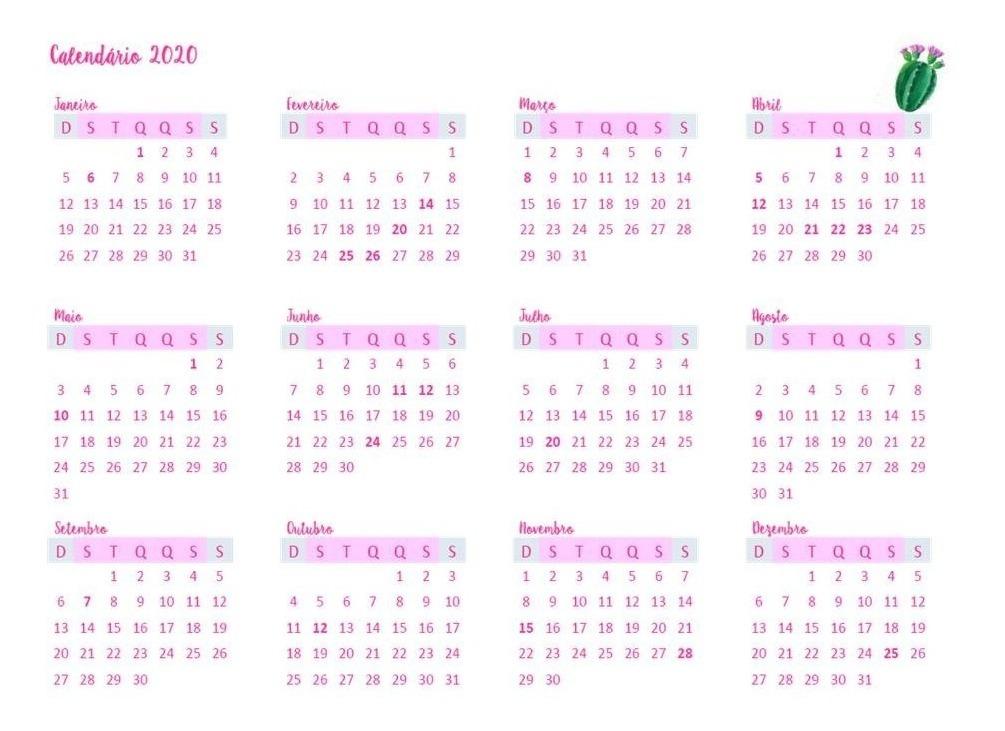 Calendario 2020 Pdf Gratis.Calendario Planner 2020 Mensal Cactos Feriados Agenda Pdf