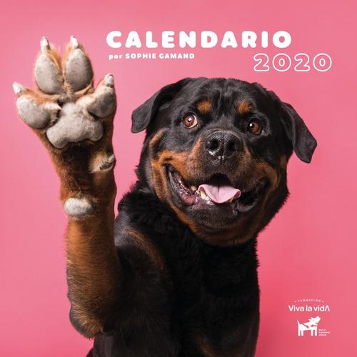 calendario solidario 2020 de fundación viva la vida