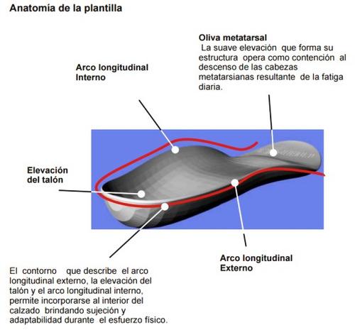 calzado de seguridad pu bidensidad con puntera negro nº 44