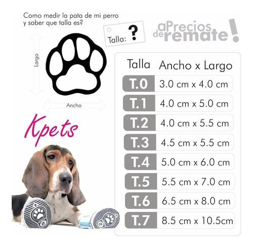 calzado mascota perro