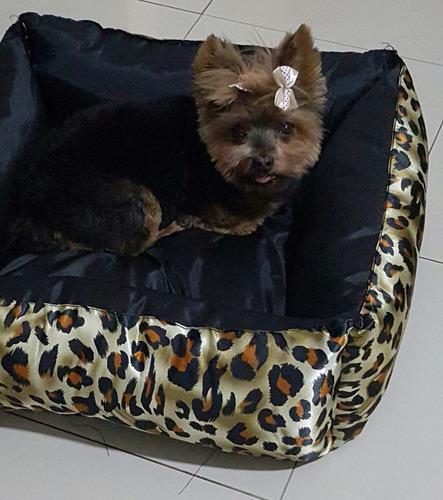 cama caminha cachorro gato m 55x55 cães pet almofada colchão