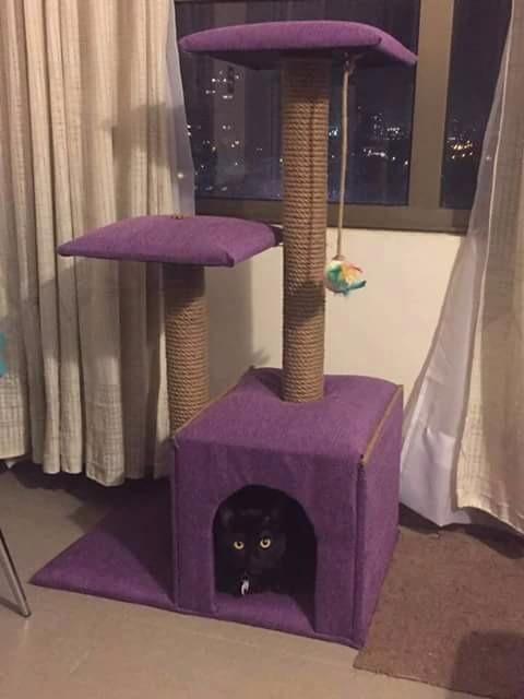Cama casa y rascador para gatos 90 cm en for Casa y cama