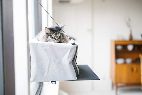 cama colgante de ventana para gato