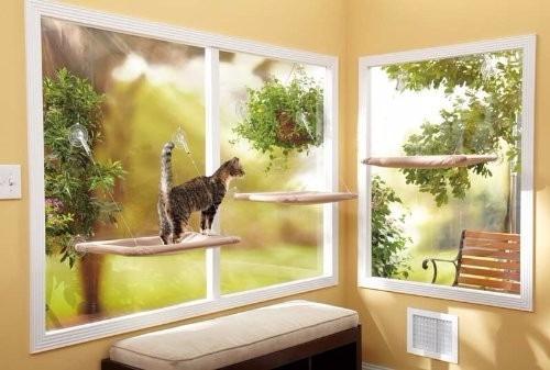 cama de gatitos para colgar en la ventana sunny seat!