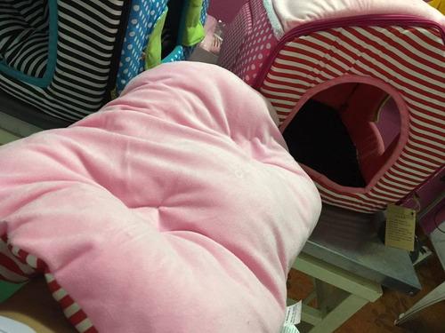 cama gato casa