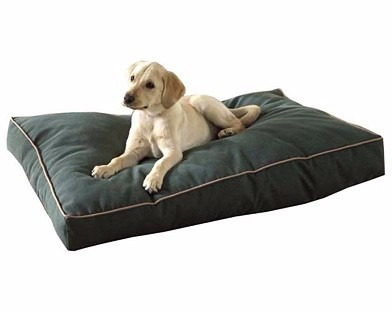 cama para cachorros