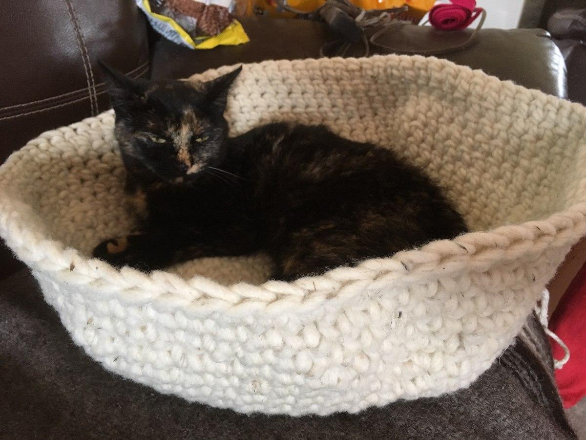 Cama para gato oferta cama donut de catshion para gato - Camas para gatos ...
