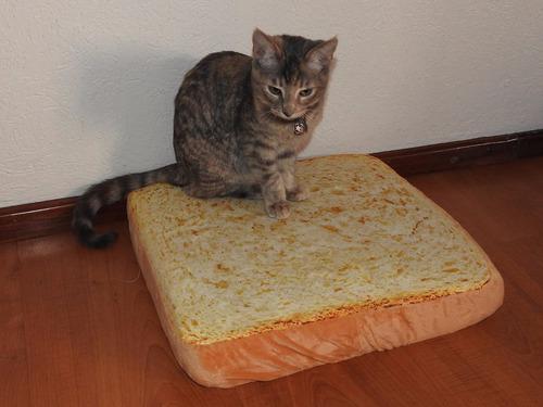 cama para gato o perro en forma de pan