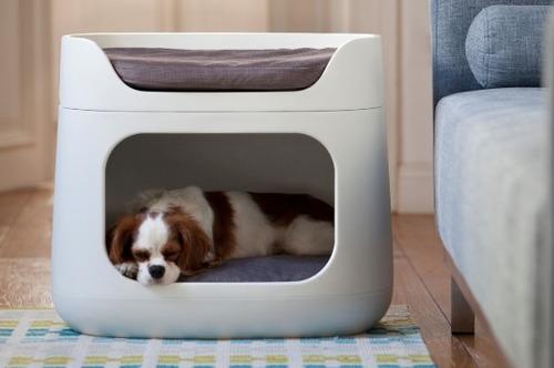 cama perro mascotas