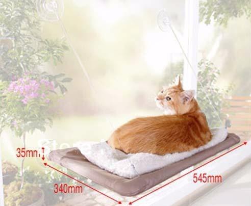 cama suspensa para gato fixação em vidro janela sunny seat