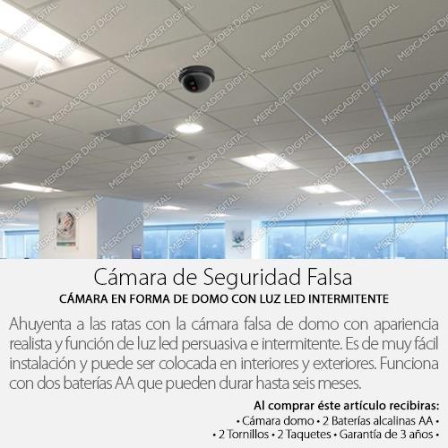 camara falsa seguridad vigilancia