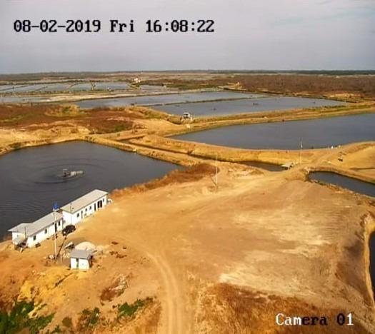 camaronera 211 hectáreas vía a la costa por safando