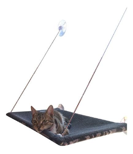 camas gatos, gatos