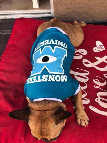 camas mediana para perros venta por mayor