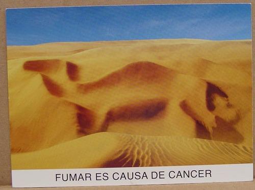 camel dunas tarjeta postal de mexico