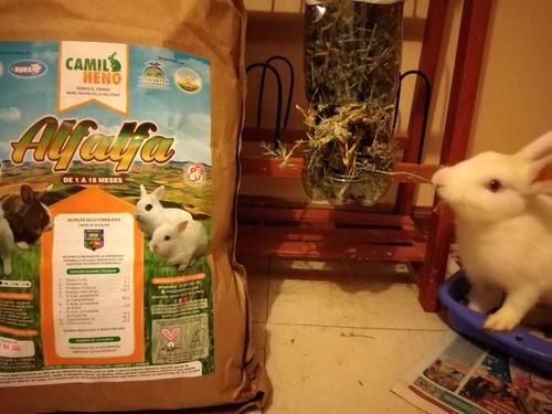 camil heno alfalfa 01 kilo