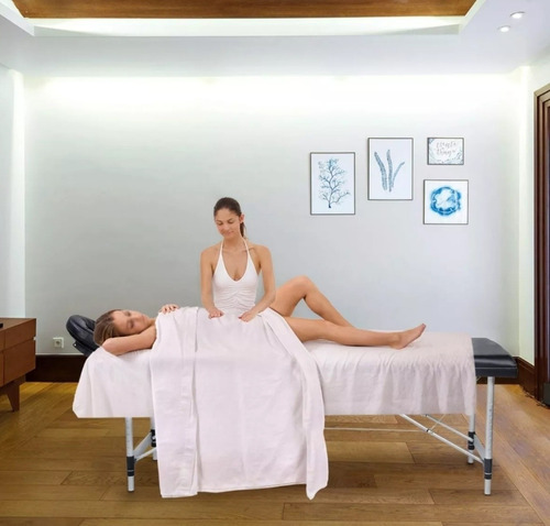 camilla de masaje plegable profesional bolso aluminio