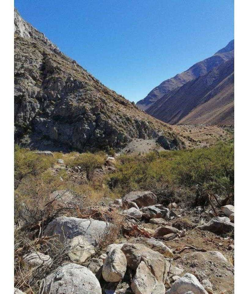 camino a cochiguaz / valle de alqui