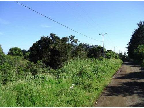 camino a coronel, terreno 8961m2, apto inmobiliarias