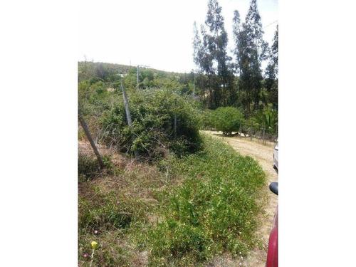 camino antiguo a valparaíso 3000