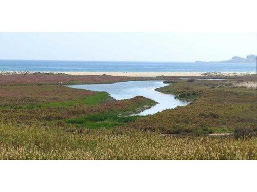 camino costero entre tongoy y puerto aldea
