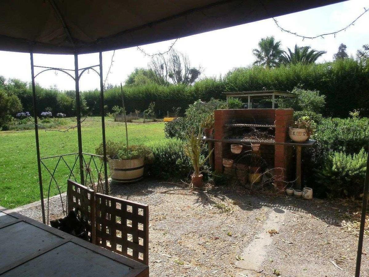 camino el oliveto / fundo santa alicia