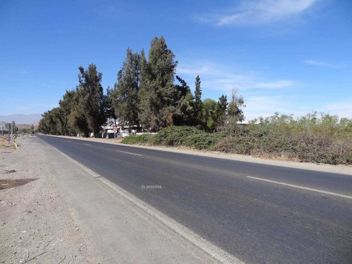 camino lo echevers 49