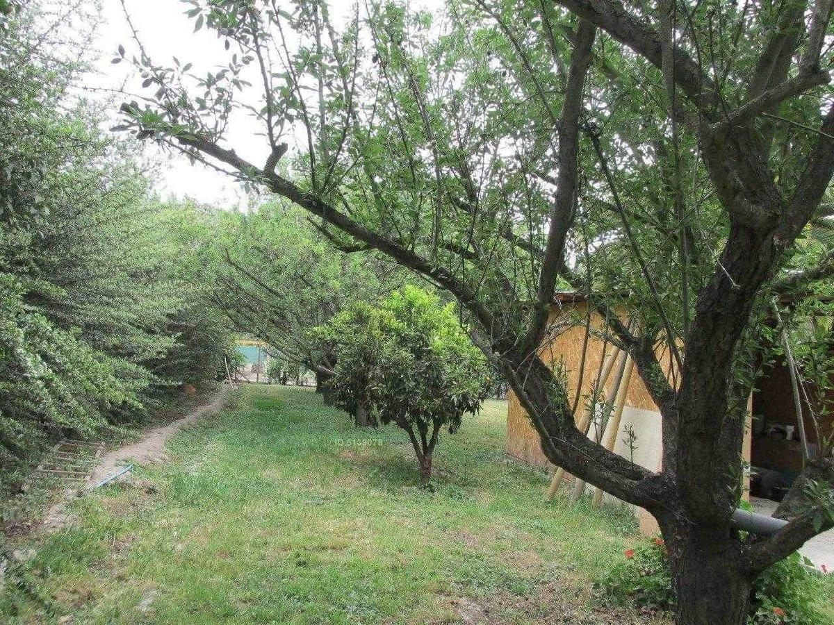 camino lonquen sur / camino los eucaliptus / el papagallo /
