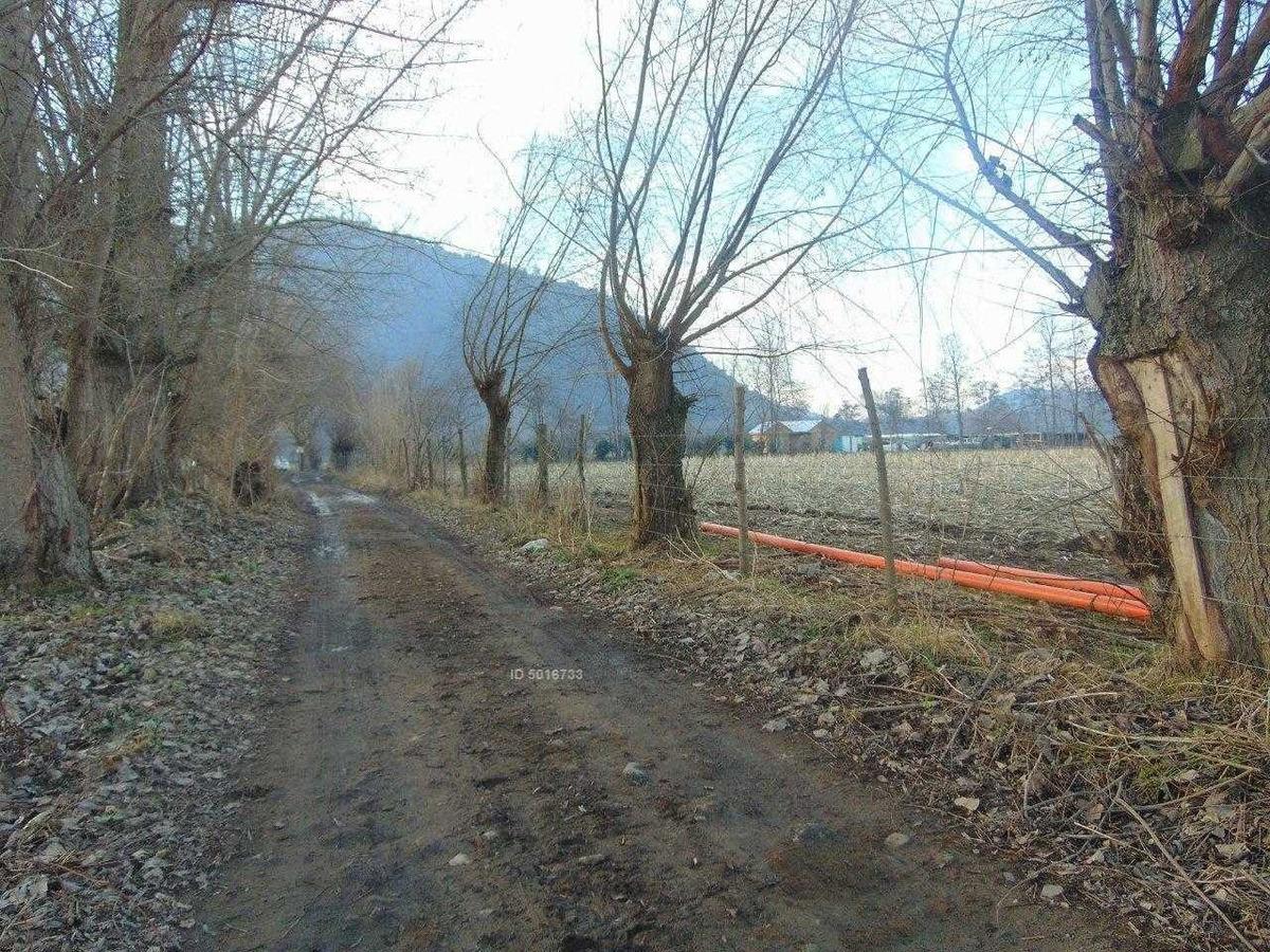 camino pintué