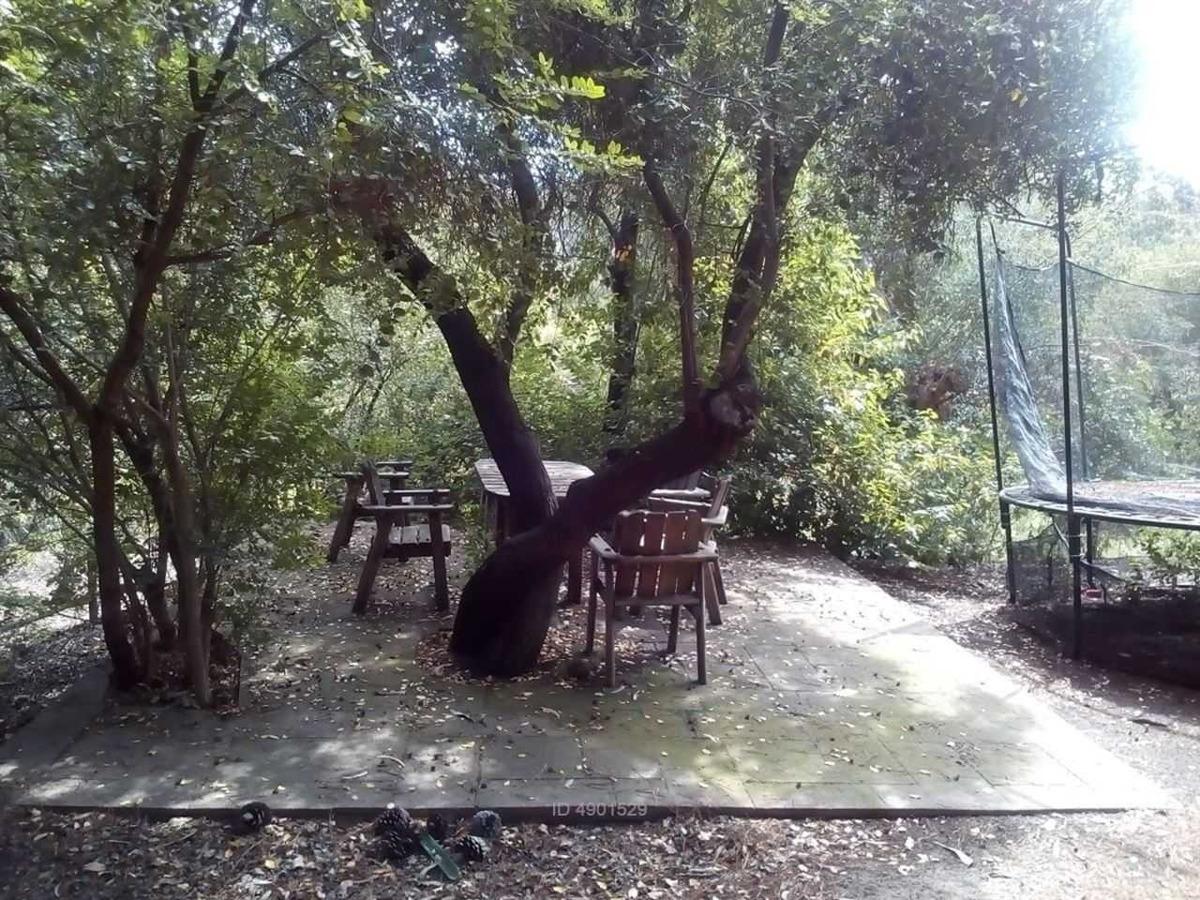 camino refugio del arrayan