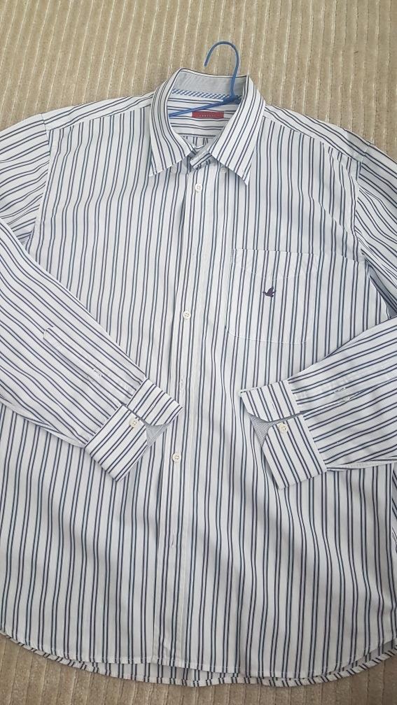 camisa brooksfield concept listras como nova tamanho 43 bran. Carregando  zoom. 702754e7569f5