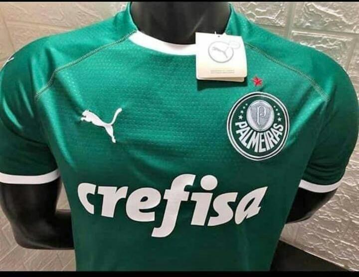 Camisa Do Palmeiras Oficial 2019 Personalizada - R  189 1bd79f6dc5bfe