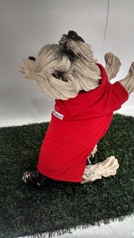 camisa polo cachorro roupas cachorro pet 8 ao 13 rottweiler