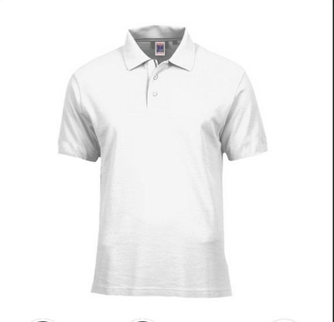 Camisa Pólo Lisa P  Ser Bordada Logo Personalizada  Uniforme - R  46 ... a96ff6acd298a
