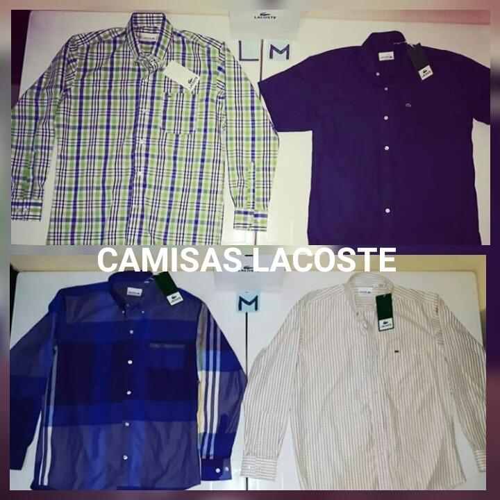 Camisas Lacoste Classic Fit Originales - U S 40,00 en Mercado Libre 67c00ba777