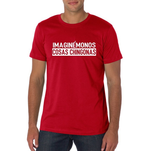 camiseta imaginémonos cosas chingonas / chicharito / mundial