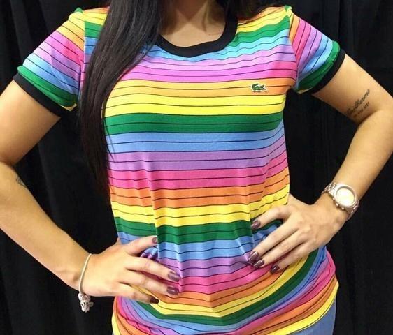 Camiseta Lacoste Arco Iris Lançamento!!! - R  59,99 em Mercado Livre 3c9dda2251