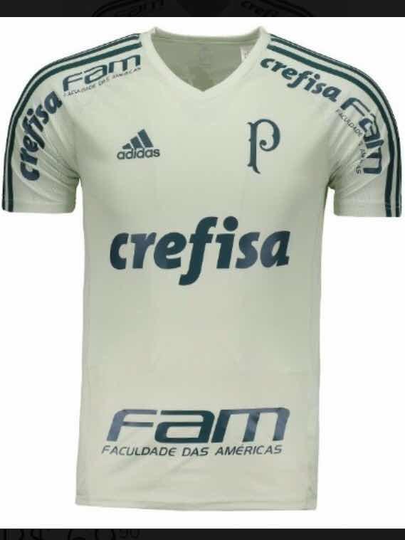 5c3ab1be6a Camiseta Treino Palmeiras Personalizada - R  74