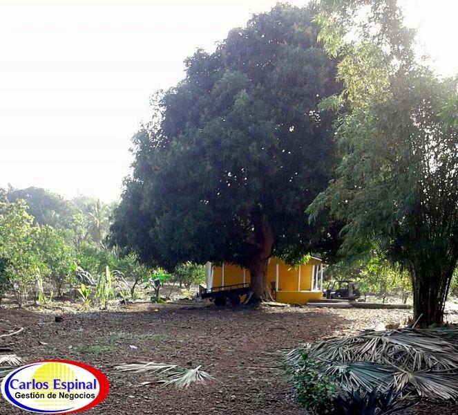 campito con casa de venta en república dominicana crt693