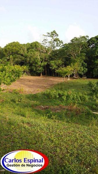 campito con río de venta en higuey, república dominicana